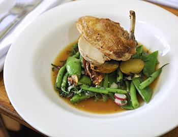 Chicken dish with greens