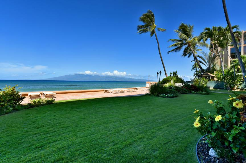 Maui oceanfront vacation rental resort lawn