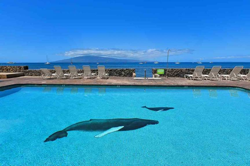 Clear pool with waterfront views at Lahaina Roads Resort